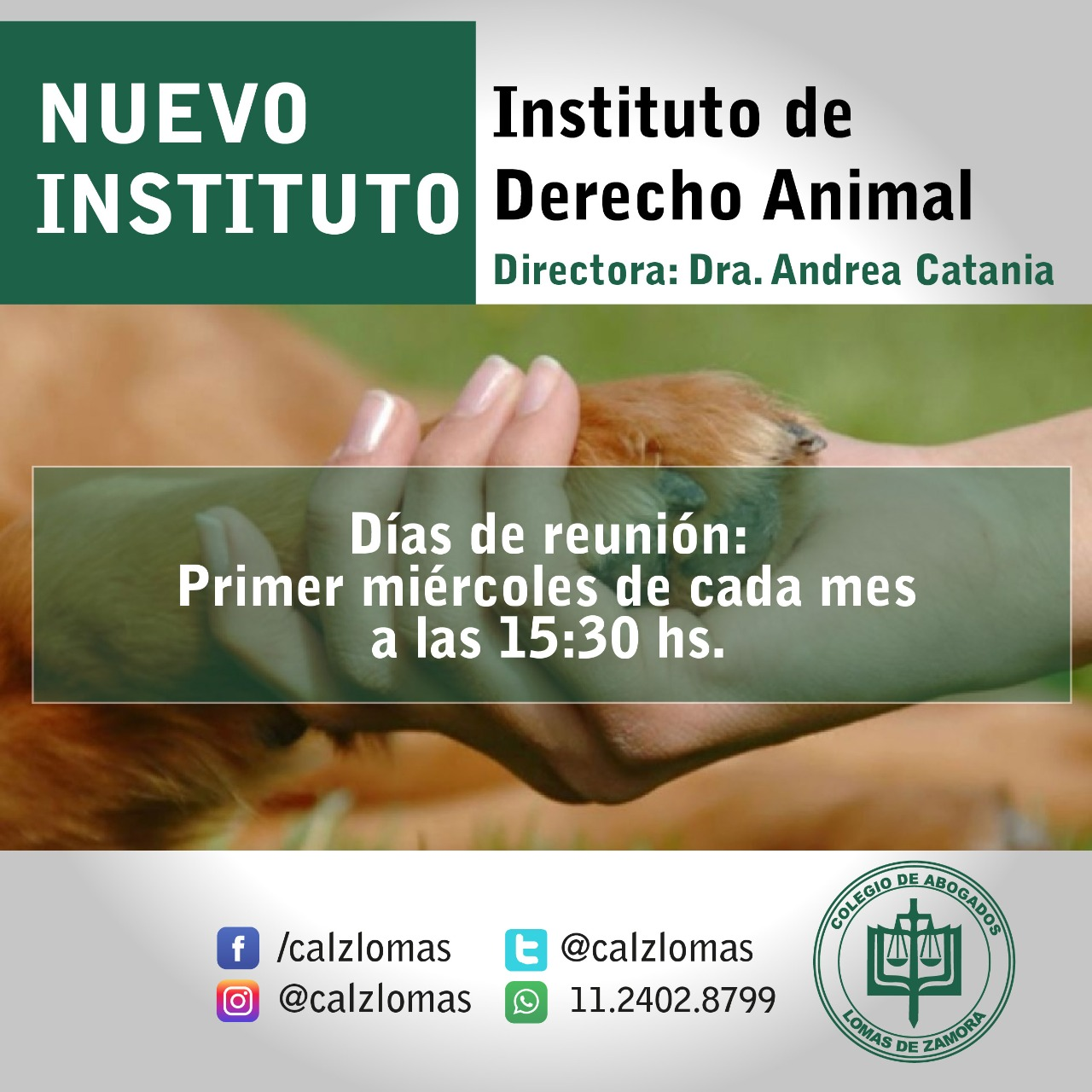 Se creó el Instituto de Derecho Animal